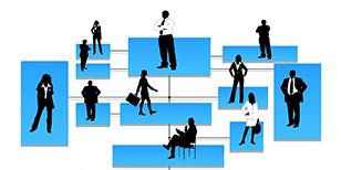 分科会組織図画像